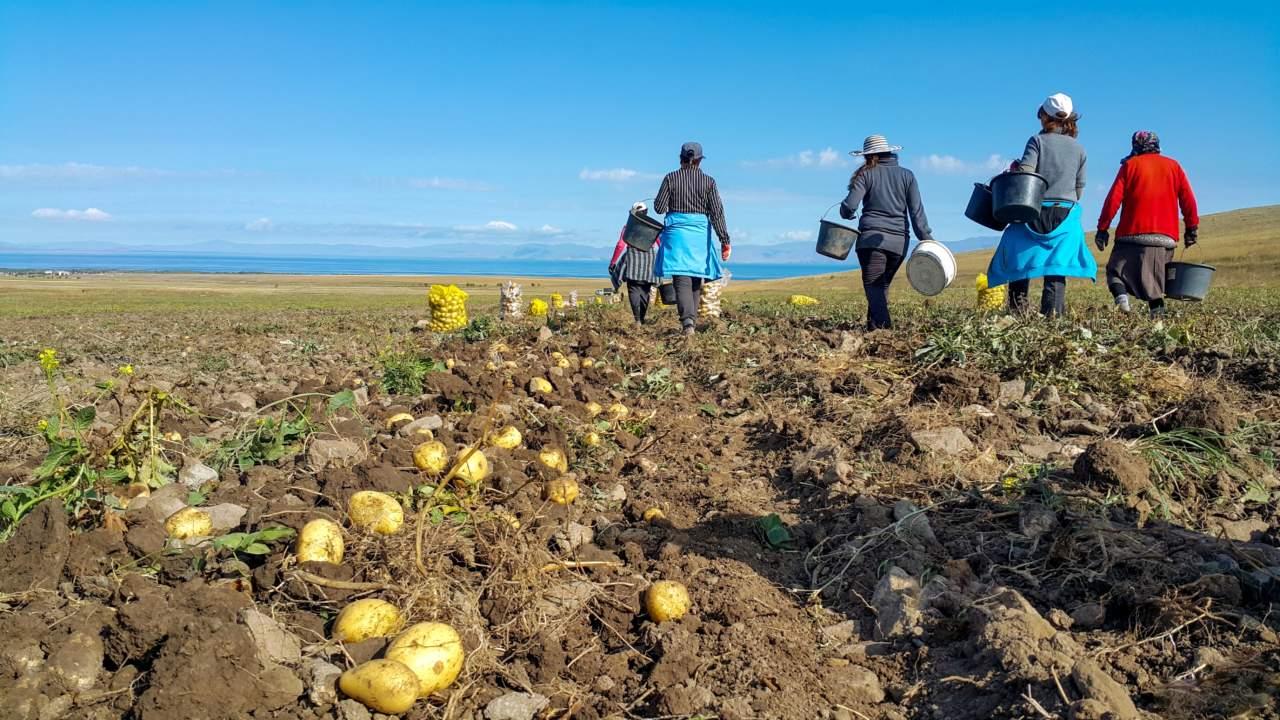 La CISL e la FAI CISL, insieme all'Anolf, per offrire assistenza alle lavoratrici e ai lavoratori della Marsica nel settore agro-alimentare