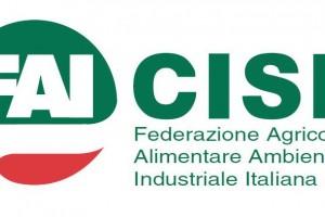 La FAI CISL AbruzzoMolise non rinuncia ma rilancia