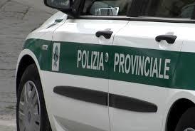 Accordo l'avvalimento delle Polizie Provinciali